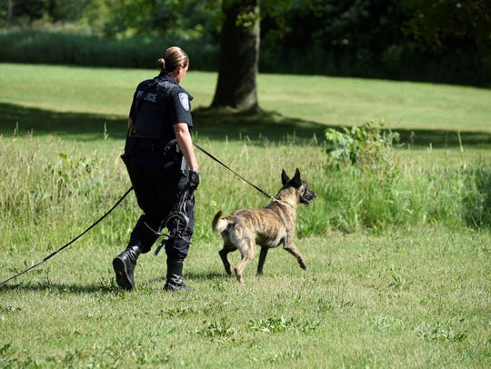 A police dog joins the search for a missing teen.