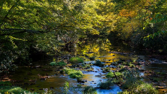 Golden leaves reflect off the Linville Rivert, which flows into the scenic Linville Falls and the famous Linville Gorge.