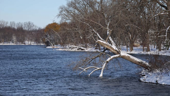 Snow hangs off the trees along the Wapsipinicon River running through Independence on Saturday, Nov. 21, 2015.