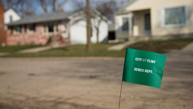 A City of Flint Sewer Dept. marker flag waves in the wind on a block where lead water lines have started to be replaced on March 17, 2016 in Flint, Michigan.