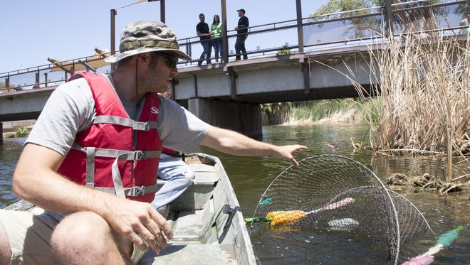 Taylor Cotten, a volunteer, traps a non-native turtle at the Phoenix Zoo.