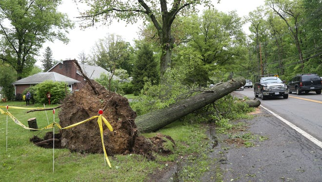 A downed tree on Route 52 in Fishkill on May 17, 2018.