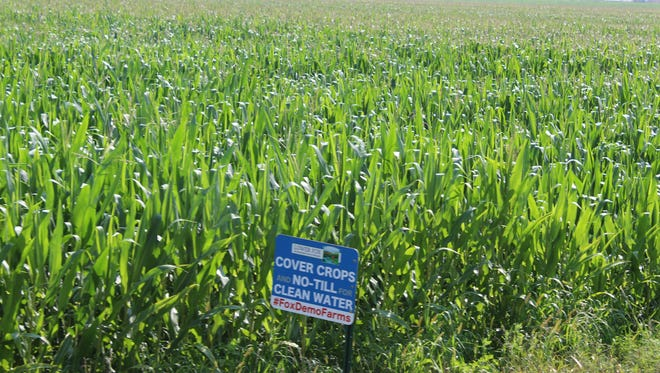 All of the acres on Brickstead Farm are cropped using no-till practices and cover cropping.