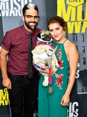 Social media star Doug the Pug on the red carpet during