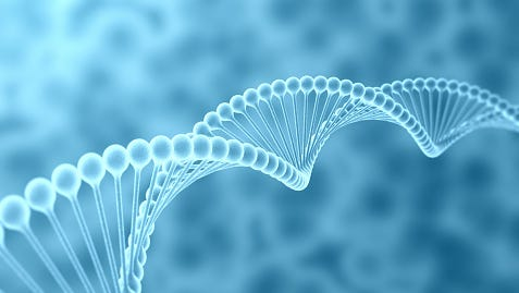 23andMe offers healths reports on genetic variants, while Ancestry DNA has an extensive database of family trees.