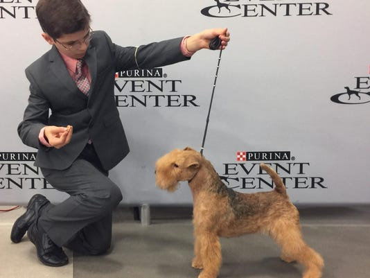 Westminster Dog Show Young Handlers