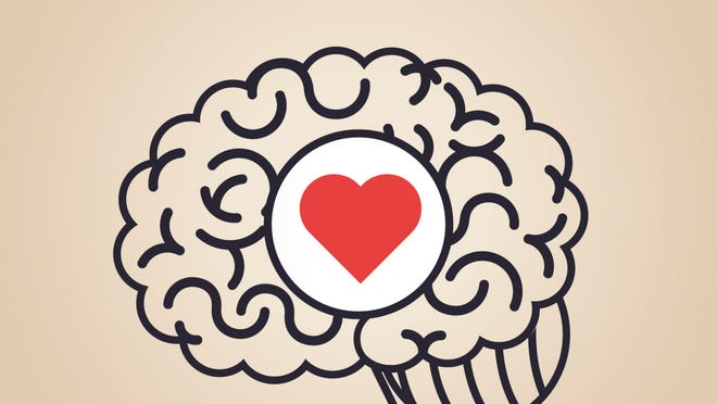 This is your brain on love.