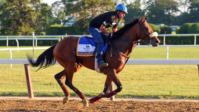 Suddenbreakingnews galloped strongly during a workout earlier in the week in preparation for the Belmont Stakes.