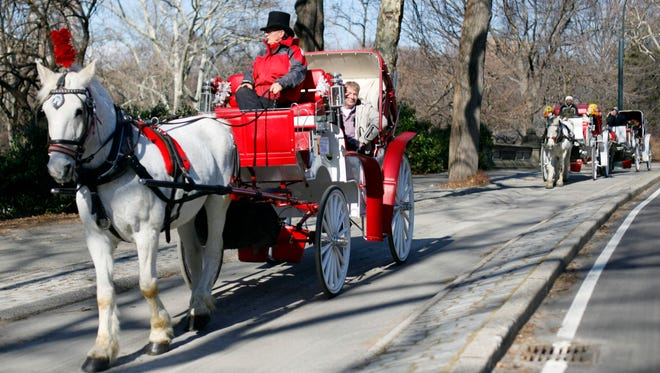 A horse-drawn carriage rolls through New York City's Central Park. Mayor-elect Bill de Blasio says he will end the practice in 2014.