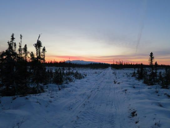 Alaska Moses Lovestad.jpeg