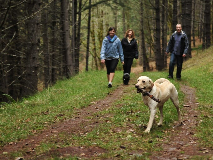 Hikers take their dog for a walk at Beazell Memorial
