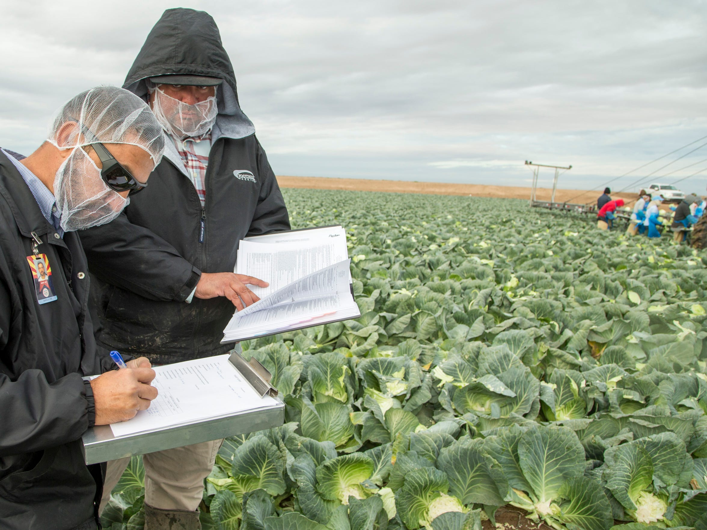 Arizona Department of Agriculture Market Inspecto Juan C. Ley (left) makes a scheduled audit at Amigo Farms. Ley inspects fields,  farm equipment and support facilities. He also interviews workers. The process can take more than six hours.