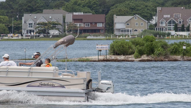 The black skimmer, which inhabits this island near the end of Sixth Street in Ocean City, is threatened by the wake of boats passing through the bay.