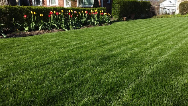 A great lawn starts in fall.