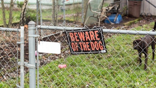 Beware of the Dog sign on the fence with a dog in the yard.