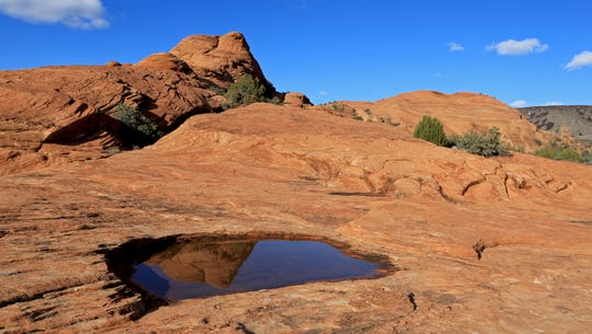 The Petrified Dunes at Snow Canyon State Park reflect