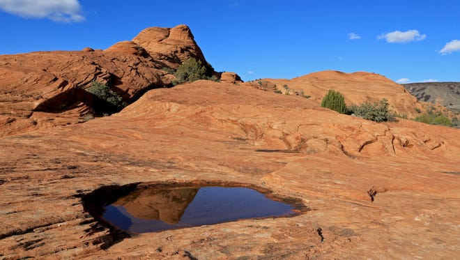 The Petrified Dunes at Snow Canyon State Park reflect in a waterpocket created by recent rainstorms.