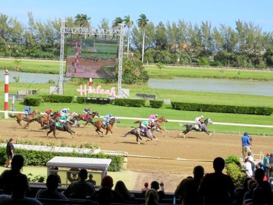 Hialeah Horse Racing