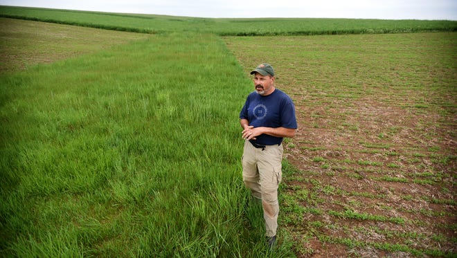 The Pennsylvania Department of Environmental Protection wants help from local conservation districts to encourage good stormwater management techniques. Farmer Brent Kaylor maintains a grassy sod that filters rainwater and helps keep topsoil intact.