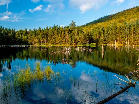BUR20160404-Beaver-pond-Duxbury.jpg