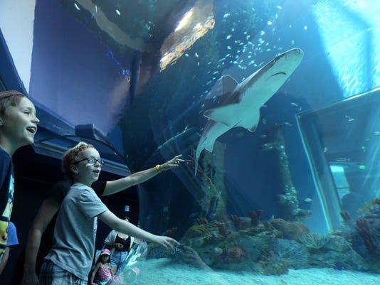MAIN101558870-Aquarium-opening-day-01.JPG
