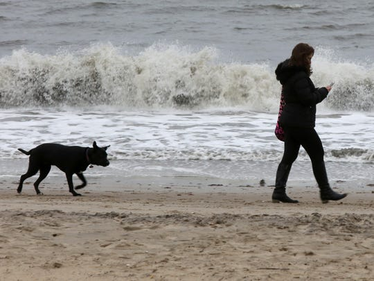 Donna Massari of Rye takes her dog, Midnight out for