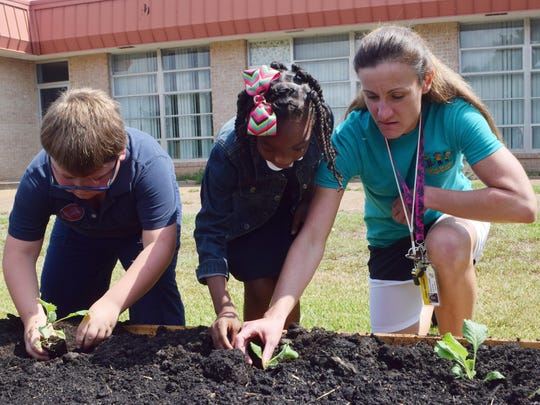 Mabel Brasher Elementary physical education teacher Allison Jowers (far right) helps third-graders Layla Gray (center) and Braylen Byrd plant cabbage in the school's new garden Tuesday.