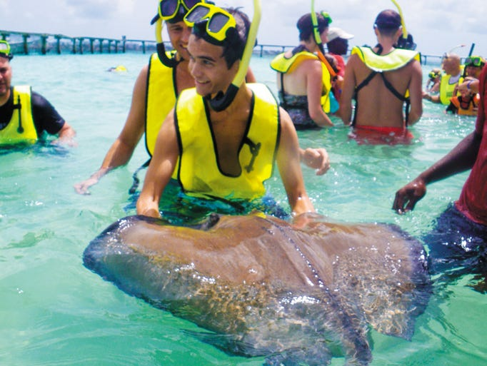 Shore excursions, like Stingray City in Nassau, can be the highlight of your cruise, but they strain the pocketbook a little.