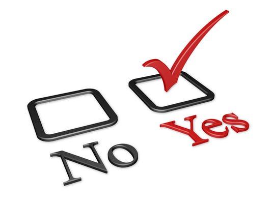 Yes vote.jpg