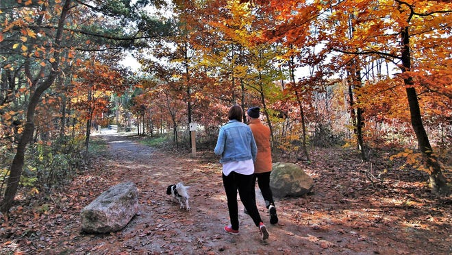 Consider outside activities at a park like Riley Trails on the day after Thanksgiving - and any day - to reduce stress, improve sleep, and lower blood pressure.