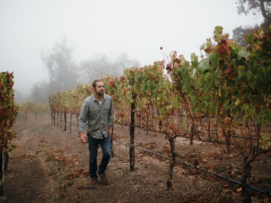 Noah among vines credit www.gretchengause.com
