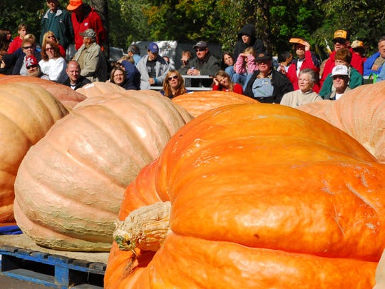 Giant Pumpkin Fest in Nekoosa.