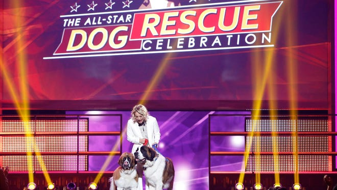 THE ALL-STAR DOG RESCUE CELEBRATION: Kaley Cuoco hosts the annual THE ALL-STAR DOG RESCUE CELEBRATION, a one-of-a-kind event celebrating Americas rescue dogs, airing Thursday, Nov. 26.