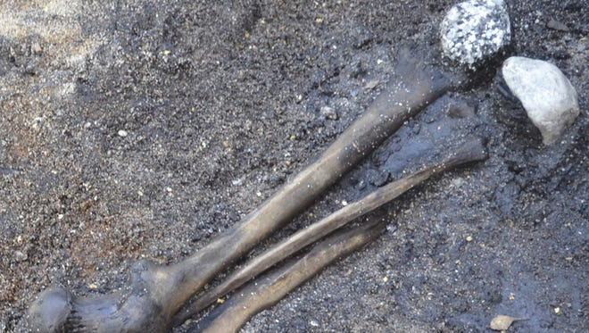 Leg bones from the losing combatants were placed in wetlands along with stones.