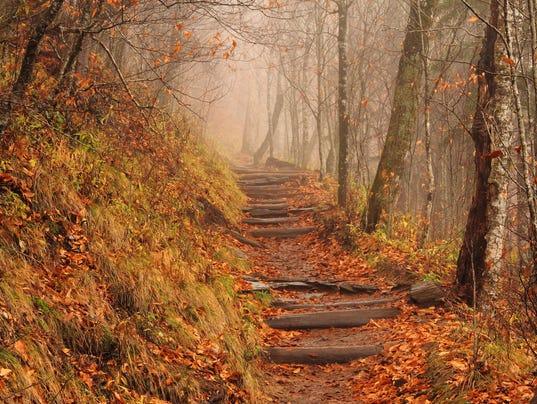 Foggy Appalachian Trail