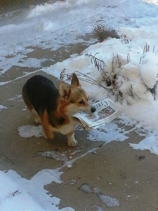 Paper delivery