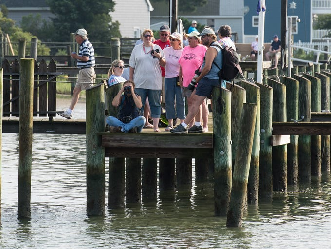 Crowds gather on a nearby pier to watch the Pony Swim