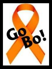 GO BO Foundation logo
