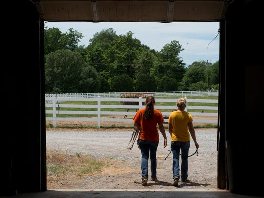Summer interns Erika Jones, left, and Ashlyn Grogan head out of the barn at Gumz Farms to collect another pair of weanling foals Tuesday afternoon.