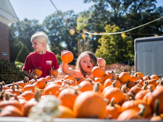 Kennedie Smith, 4, helps unload baby pumpkins at Trinity United Methodist Church on Wednesday, October 12, 2016 in Anderson.