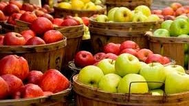 Juicy Michigan apples make up the palette of early fall at the farmers market.