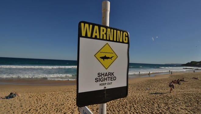 A sign posted on a beach in the Australian city of Newcastle on Jan. 17, 2015, warns swimmers and surfers that a shark has been spotted off the coast.