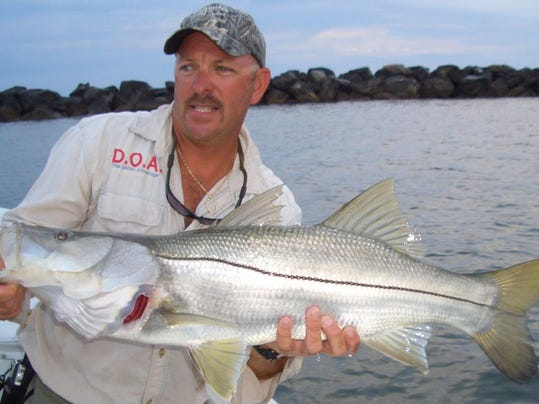 Fishing report whiting snook on the line for Whiting fish florida