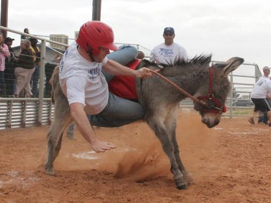 In this file photo, a member from the Alamogordo Police Department being is bucked off by a donkey during a donkey baseball fundraiser event at the Otero County Fairgrounds sponsored by the Alamogordo Optimist Club.