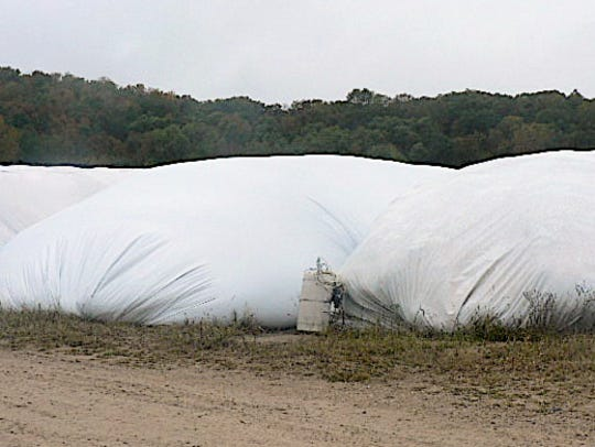 Part of the forage is stored in bags.