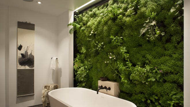 A living garden bathroom wall at a private residence in San Francisco was designed by Siol Studios.