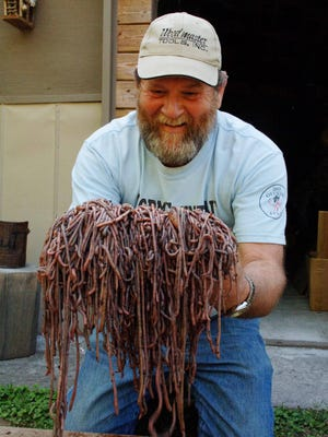 Gary Revell with his harvest of Diplocardia mississippiensis, 2008.
