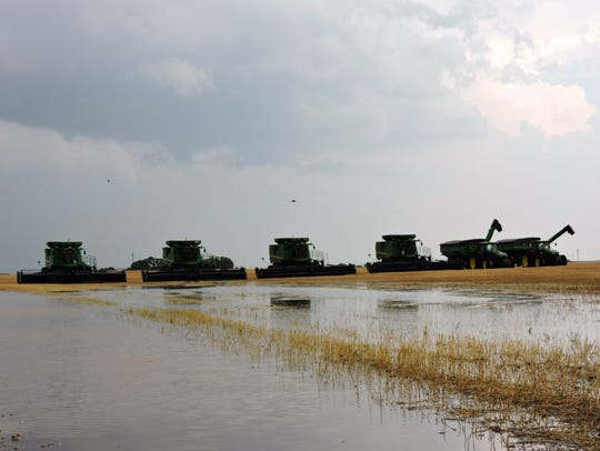 Combines from North Dakota, lined up west of Vernon