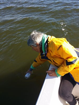 Learn how your toothpaste, lint and other plastic contribute to marine microplastics pollution in the Indian River Lagoon and Atlantic Ocean on Thursday, Nov. 3 at 7 p.m.