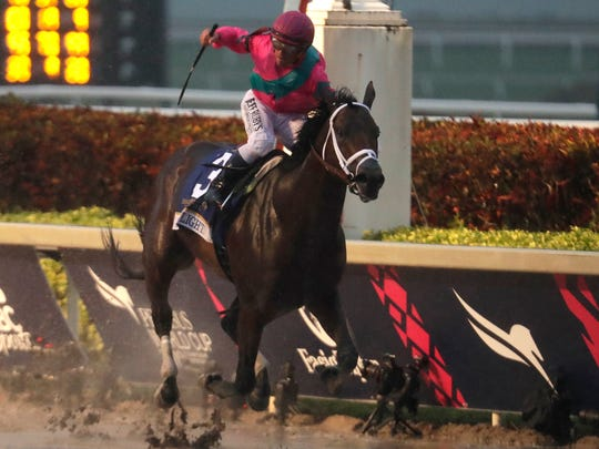 Javier Castellano crosses the finish line aboard City of Light to win the Pegasus World Cup Invitational Horse Race, Saturday, Jan. 26, 2019, at Gulfstream Park in Hallandale Beach, Fla. (AP Photo/Lynne Sladky)